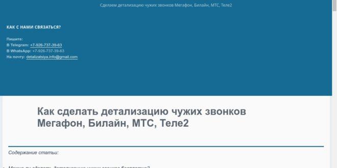 detalizatsiya.info